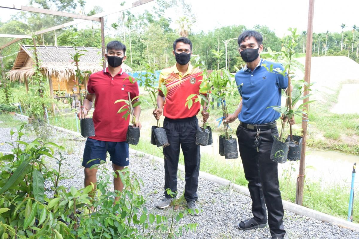 ม.ราชภัฏนครฯ แจกพันธุ์พืชผักเพื่อเลี้ยงชีพช่วย เหลือชาวชุมชนท่างิ้วในสถานการณ์ COVID-19-7