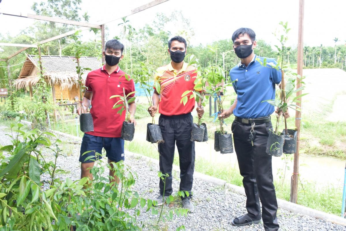 ม.ราชภัฏนครฯ แจกพันธุ์พืชผักเพื่อเลี้ยงชีพช่วย เหลือชาวชุมชนท่างิ้วในสถานการณ์ COVID-19-9
